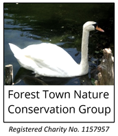 Forest Town Nature Conservation Group